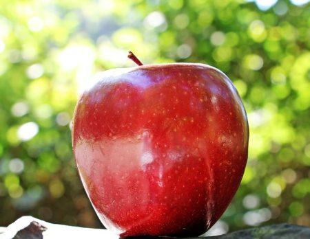 apple-1702316_640