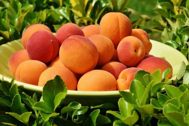 apricots-1522680_960_720