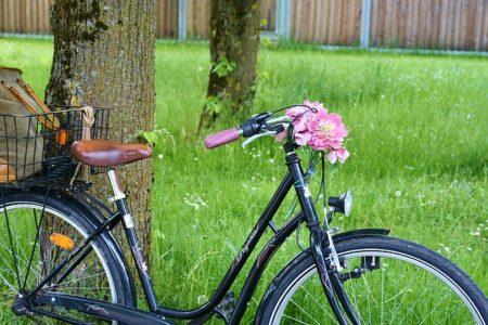 bike-1418468_640