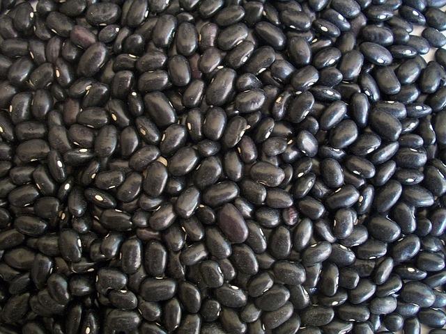 black-beans-14522_640