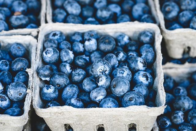 blue-1326154_640