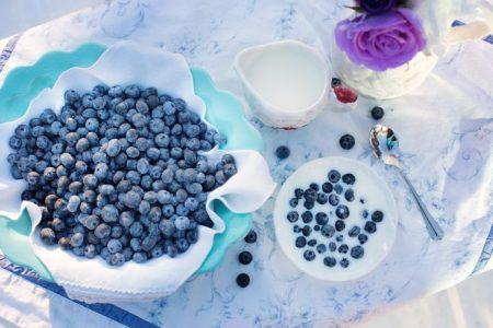 blueberries-1576409__480