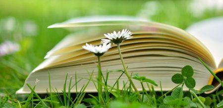 book-2304389_640