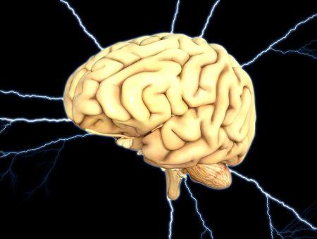 brain-1845940_640