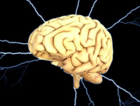 brain-1845940__480