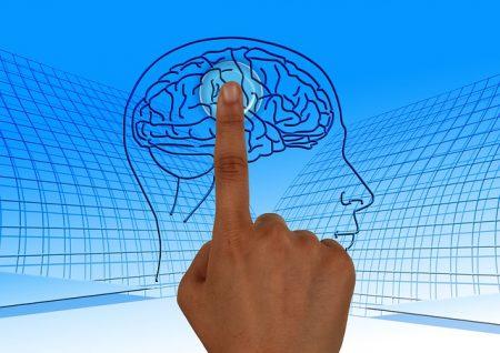 brain-770044_640