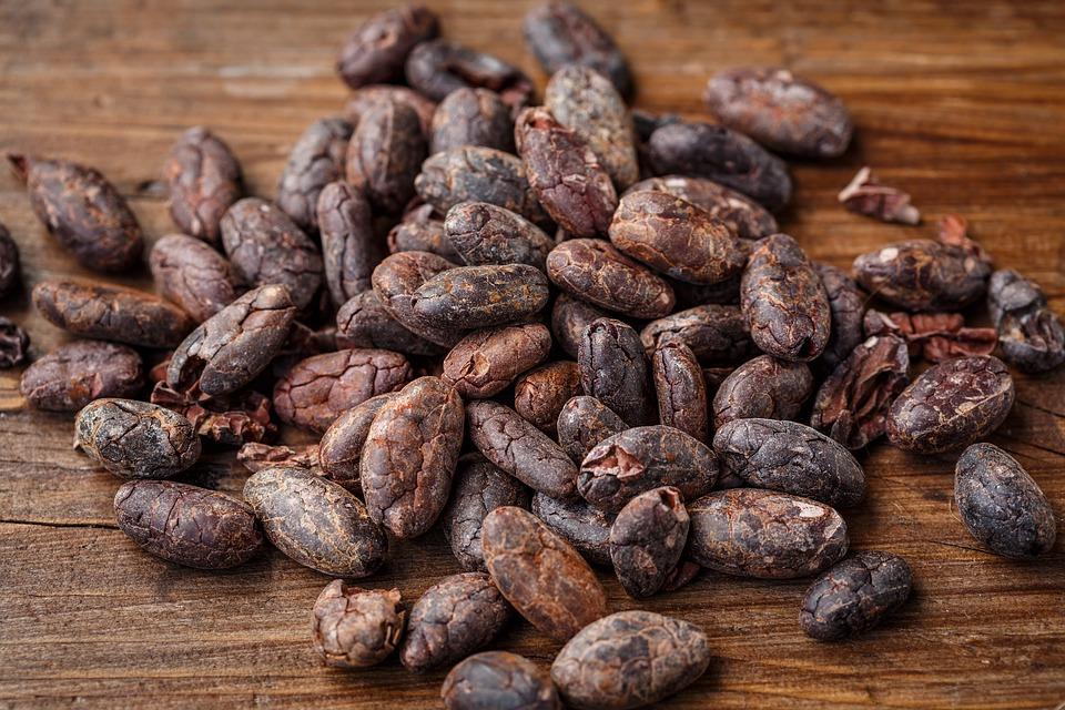 cacao bean 2522918 960 720