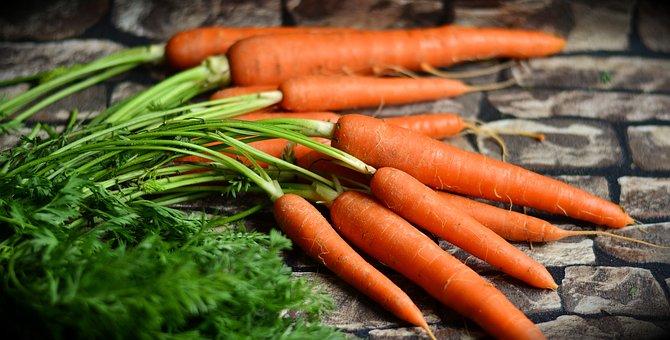 carrots 2387394  340
