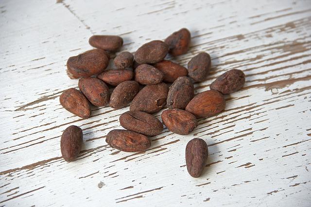 cocoa-bean-1282894_640