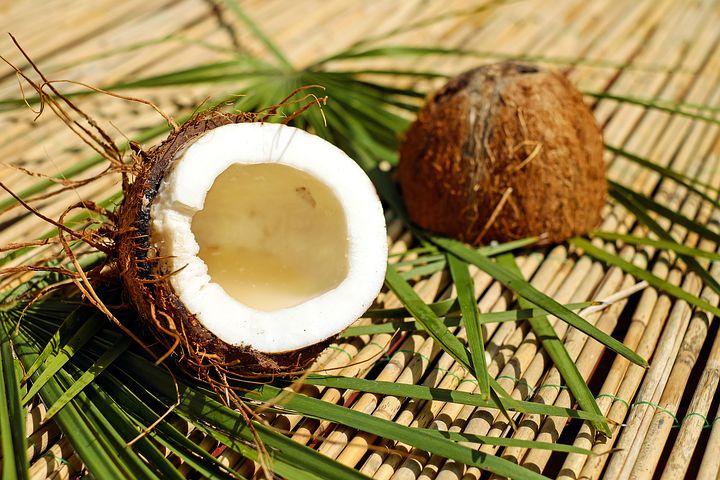 coconut-1501334__480