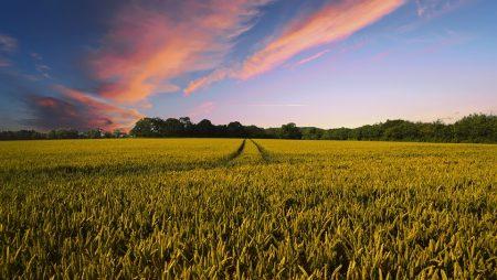 countryside-2326787_960_720