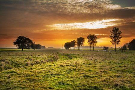 countryside-336686_640