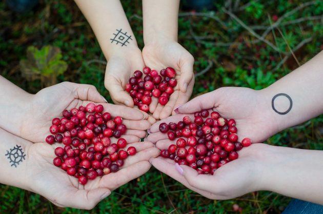 cranberries 2810138 960 720