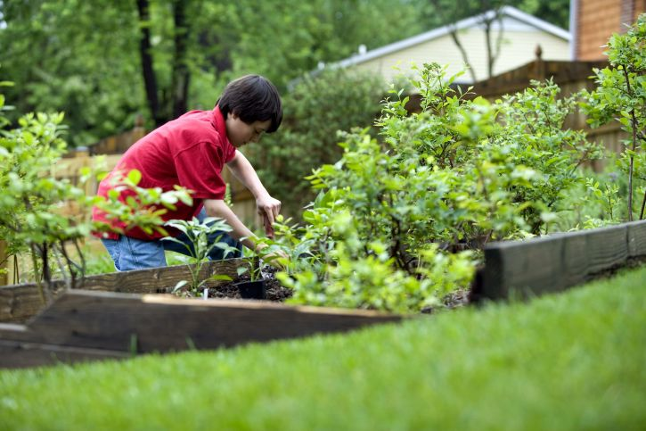 cute young boy gardening in his home backyard 725x483