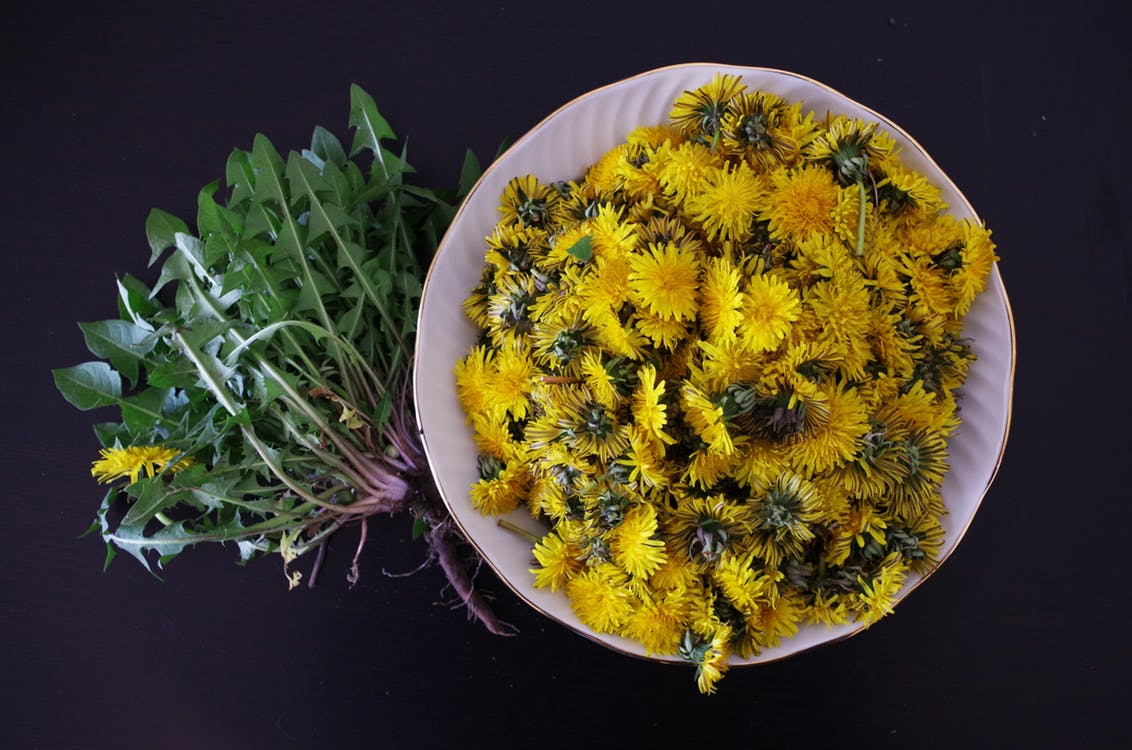 dandelion health salad flowers 161598
