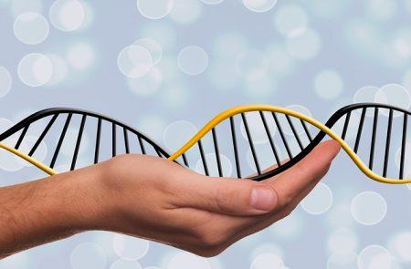 deoxyribonucleic-acid-1500076_640