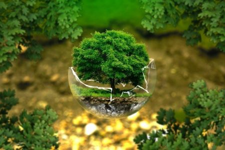 digital-composite-image-of-tree-in-broken-glass-ball