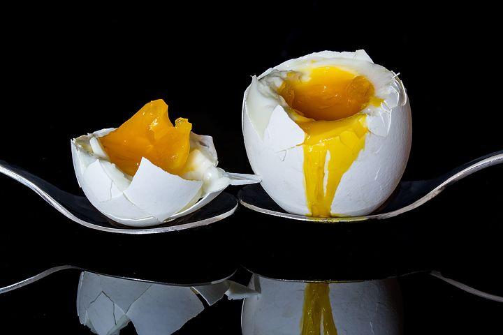 egg-2161877__480