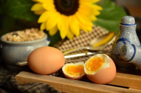 egg-869300_640