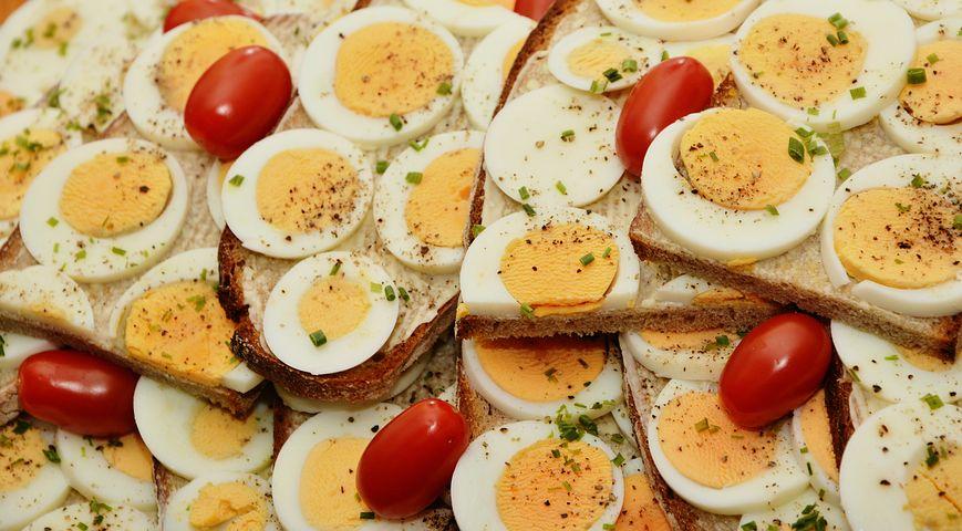 egg-sandwich-2761894__480