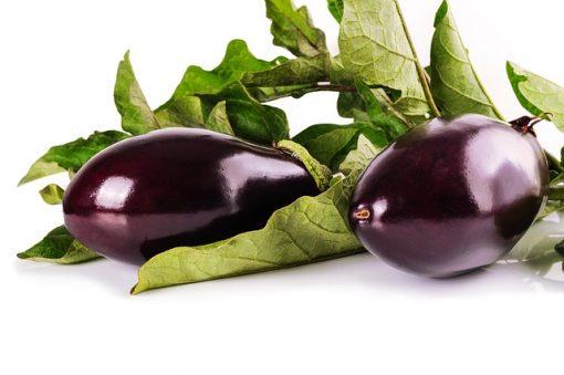 eggplant 1659784 640