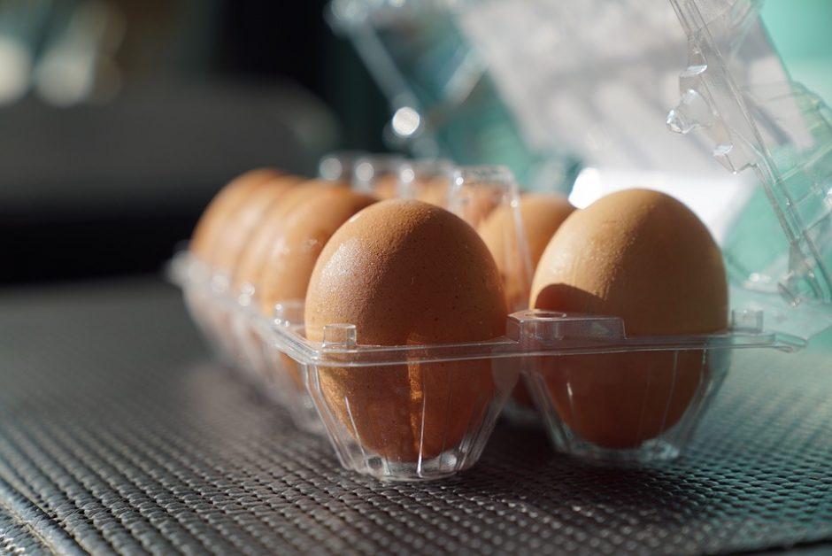 eggs-2720392_960_720
