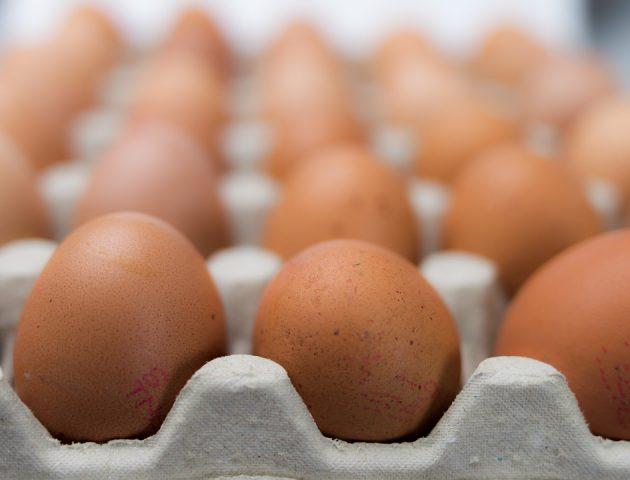 eggs 550652 960 720