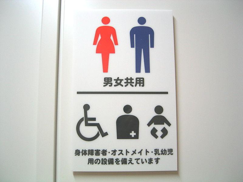 800px 多目的トイレ