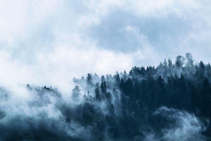 fog-1535201__480