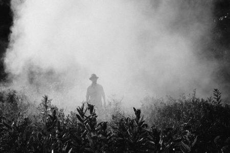 fog-918976_1920