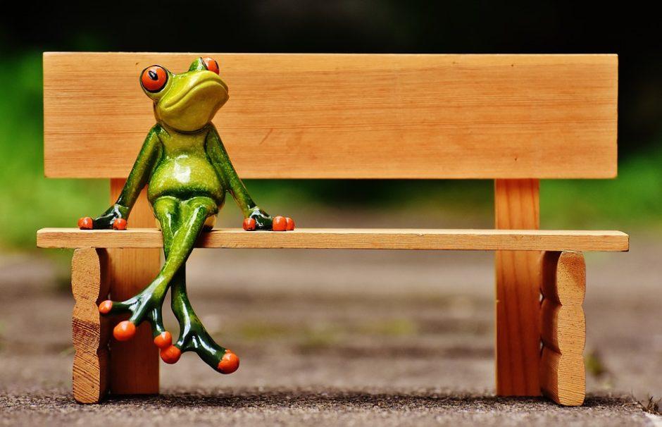frog-1610551_960_720