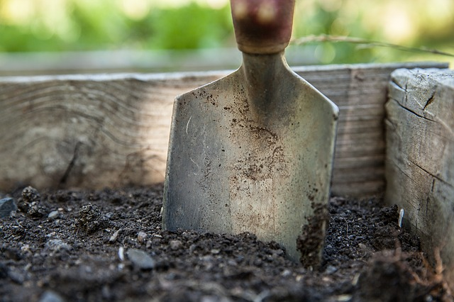 garden-1176406_640