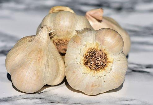 garlic 3478476  340