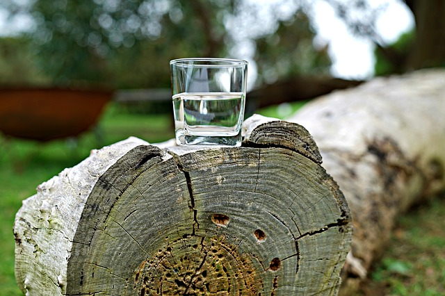 glass-of-water-2841192_640