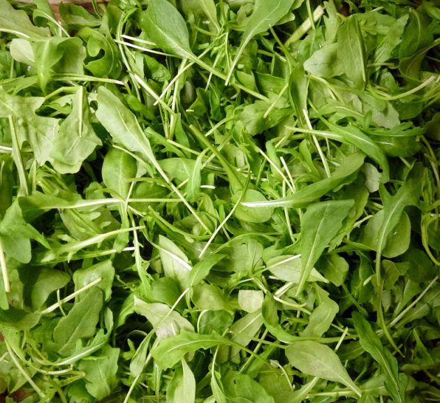 greens-2084287_960_720