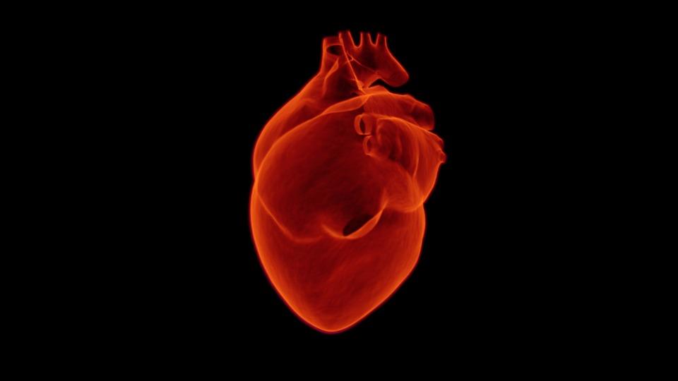 heart-1767552_960_720