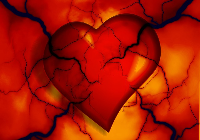 heart-2372134_640