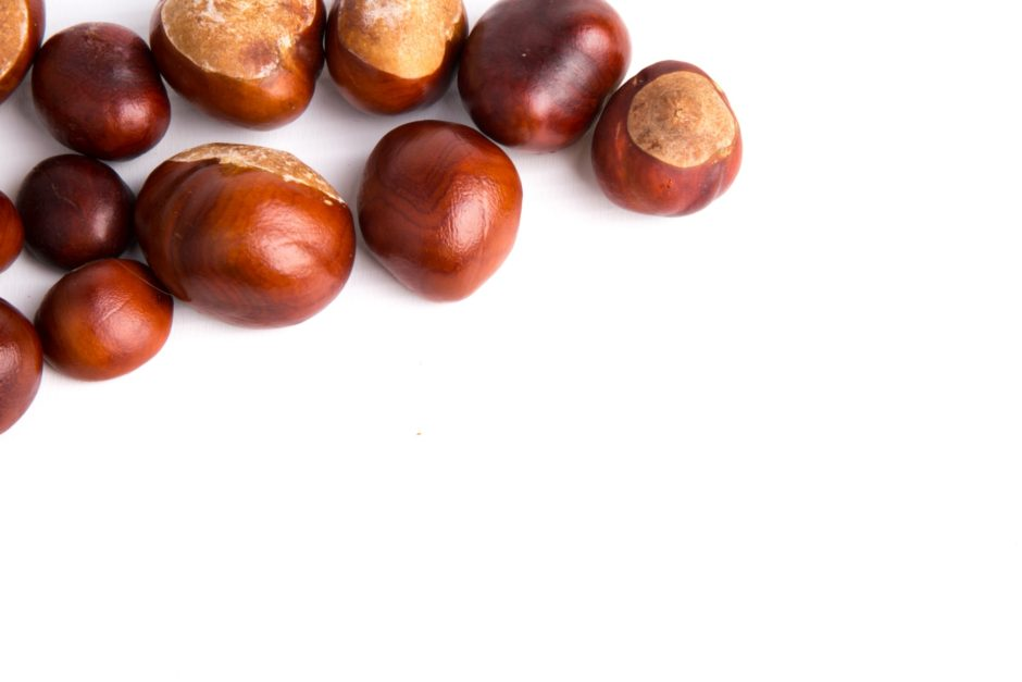 horse-chestnuts-14726301841rf