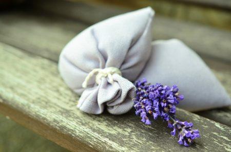 lavender-823584_640