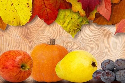 leaves-184219__340
