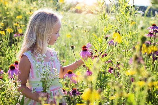 little girl 2516578 640