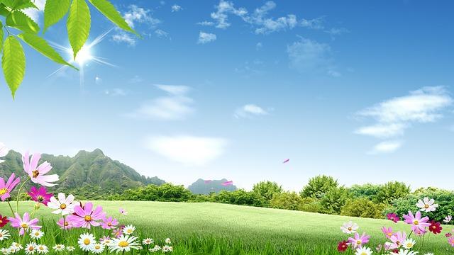 nature-1607153_640
