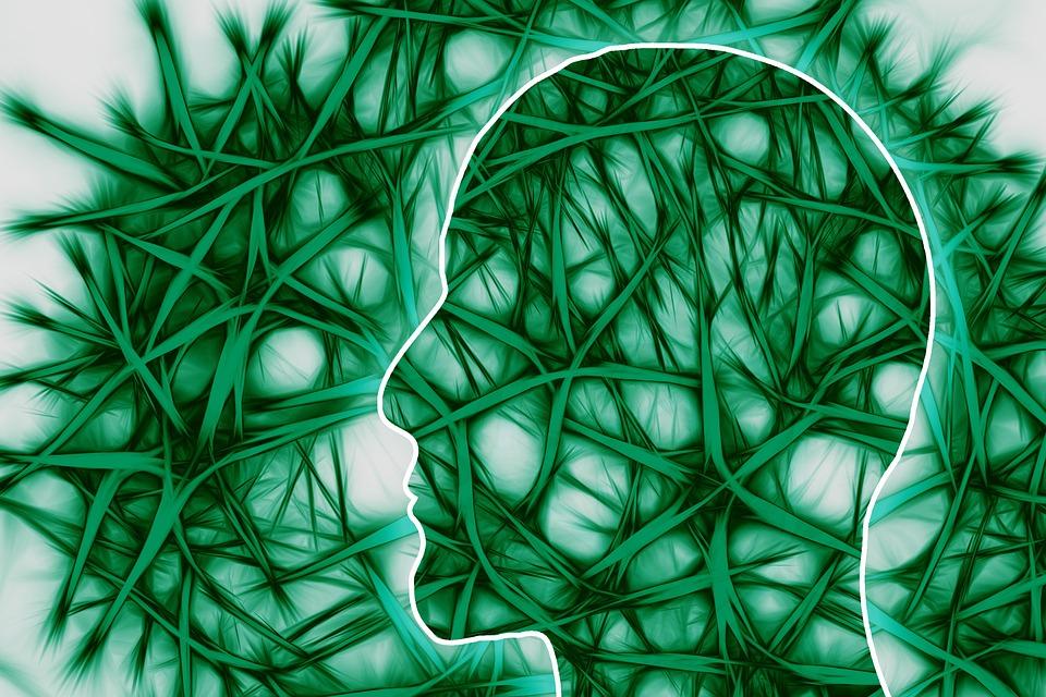 neural pathways 221718 960 720