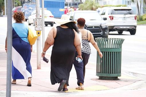 obesity-993126__340