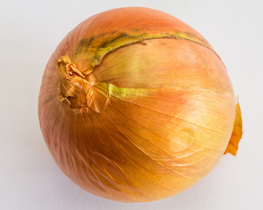 onion 885926 960 720
