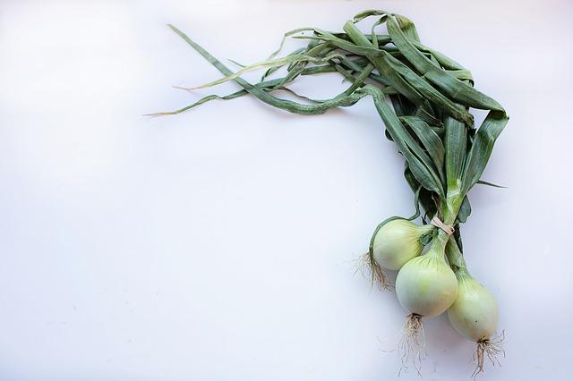 onions-2485054_640