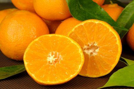 orange-15046__340