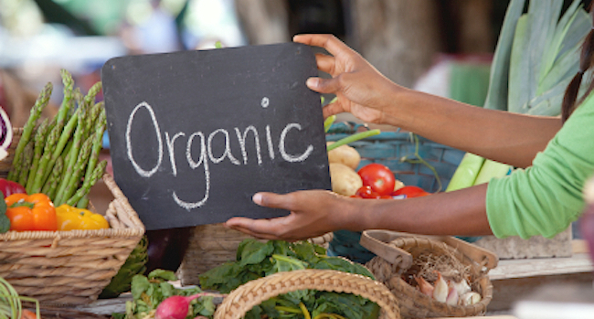 organicmarche