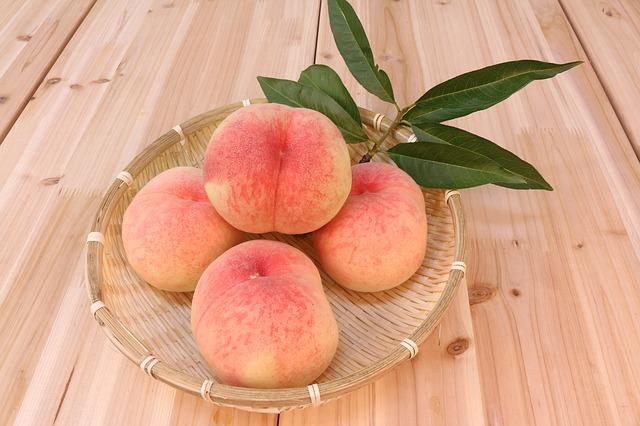 peach-583485_640