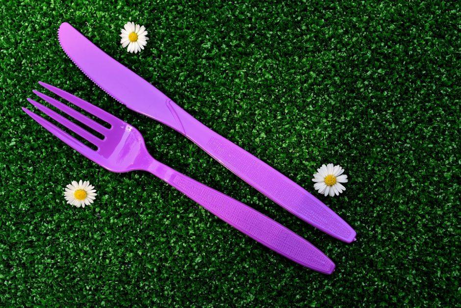 picnic-2405767_960_720